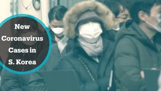 Coronavirus Outbreak: New coronavirus cases confirmed in South Korea