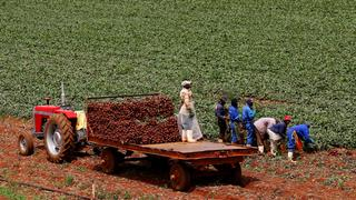 App gives smallholder farmers access to expensive equipment | Money Talks