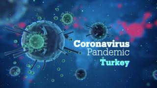 Focal Point: Turkey Coronavirus