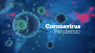 Coronavirus pandemic in Idlib Syria - Focal Point