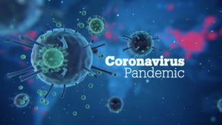 Coronavirus pandemic in the Balkans - Focal Point