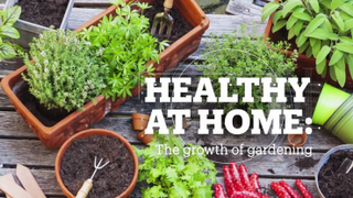 HEALTHY AT HOME: The growth of gardening