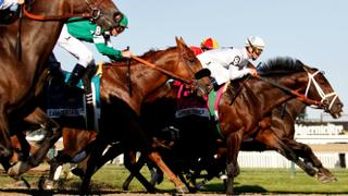 New York's horse racing tracks to reopen without fans | Money Talks