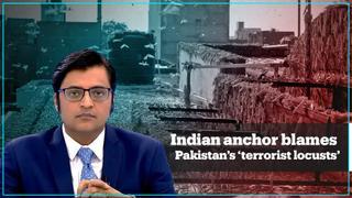 Indian anchor blames Pakistan for sending 'terrorist locusts'