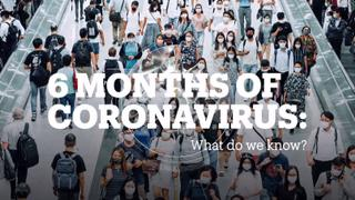 6 MONTHS OF CORONAVIRUS: What do we know?