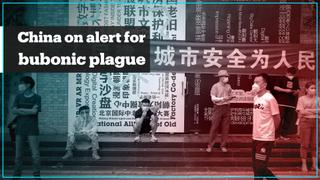 China's Inner Mongolia is on high alert for bubonic plague