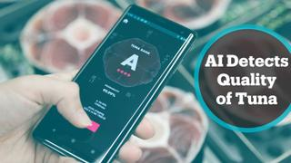 AI-powered app helps merchants to assess the quality of tuna