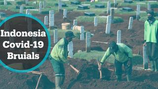 No rest for Indonesia's gravediggers as virus deaths mount