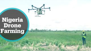 Farmers embrace drone technology to boost production