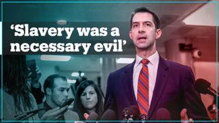 Republican senator says slavery was 'a necessary evil'
