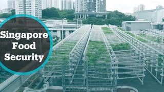 Singapore's food security
