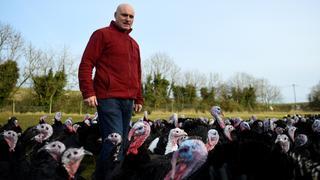 UK Turkey sales uncertain as COVID-19 dampens holiday spirit   Money Talks