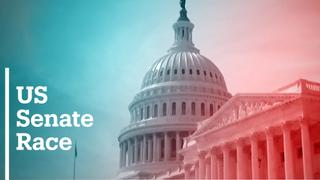 Crucial US Senate, Congress races