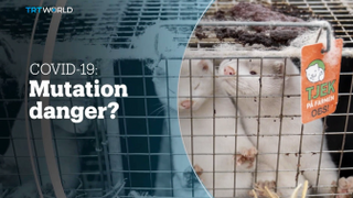 COVID-19: Mutation danger?