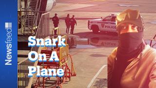 Snark on a plane