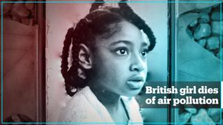 London's air pollution caused 9-year-old girl's death – landmark ruling