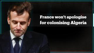 France won't apologise for colonising Algeria