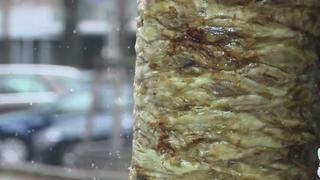 Doner Kebab Under Threat? EU parliament move to ban phosphate in snack
