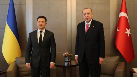 Erdogan urges 'peaceful and diplomatic' solution to Ukraine-Russia tensions