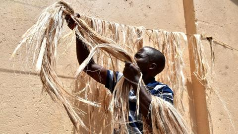 Going bananas: Uganda start-up turns plant waste into fake hair, carpets