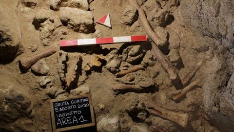 Archaeologists discover remains of 9 Neanderthals in caves near Rome