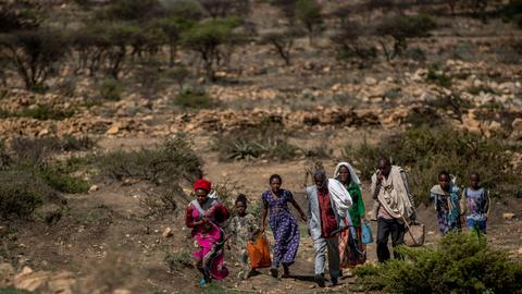 Tigray official warns of starvation threats from anti-farming 'campaign'