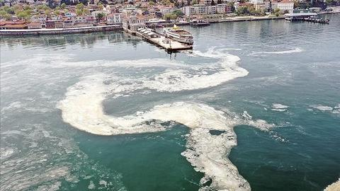 Turkish president vows to resolve Marmara 'sea snot' problem
