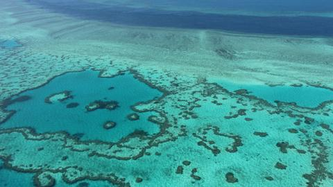 UN committee recommends listing Great Barrier Reef as 'in danger'
