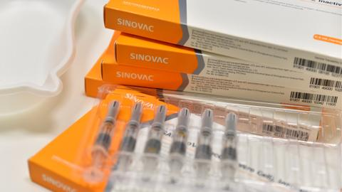 Algeria gets green light to produce Sinovac Covid-19 vaccines