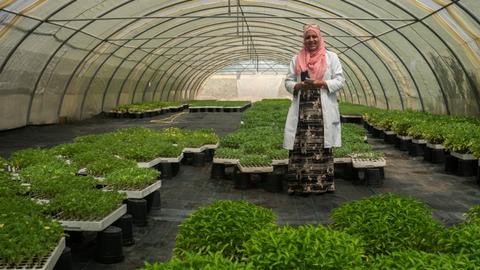 Saving seeds and lives: Tunisian women on the frontline of climate change