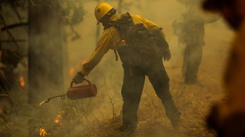 California's Windy Fire continues to grow, threatening giant sequoias