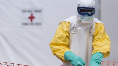 Guinea targets to overcome damage done by Ebola virus