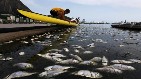 Super bacteria found in Rio's waterways ahead of Olympics