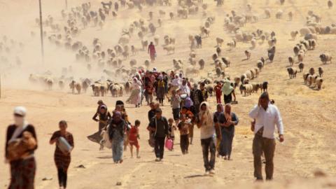 DAESH committing genocide against Yazidis, says UN report