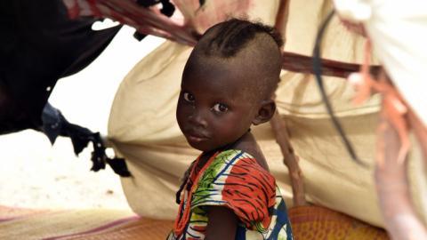 Over 1,200 die of starvation at Nigeria refugee camp