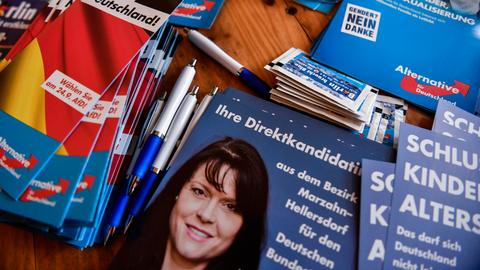 Germany's far-right resurfaces Orientalist tropes for election campaign