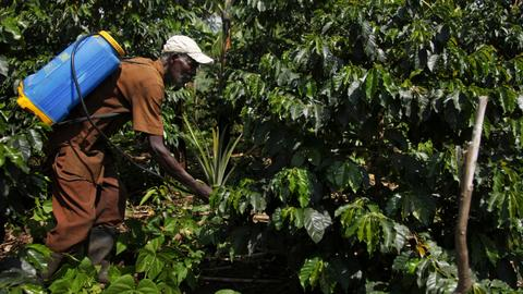 Ugandan farmers adopt new methods to tackle impacts of climate change