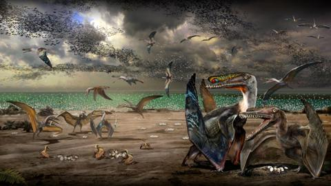 Hundreds of ancient flying reptile eggs discovered in China