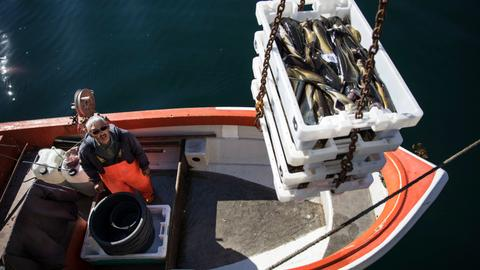 US, Russia and other powers agree to restrict fishing in Arctic seas