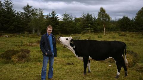 Irish beef farmers say 'hard' Brexit would hit access to UK markets