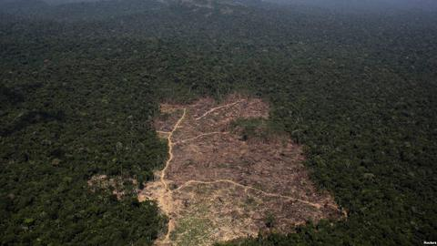 Brazil tops Places to Watch for deforestation, satellites show