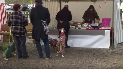 Berliners share some cheer with their pooches at Christmas market for dogs