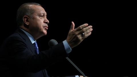 Erdogan says Turkey not eyeing Syrian territory