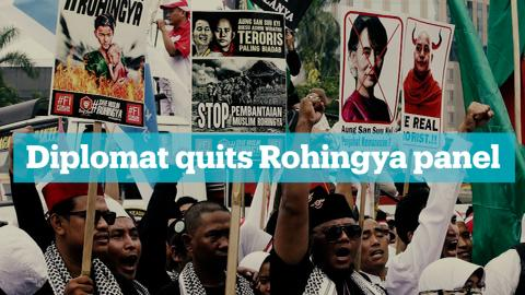 Veteran US diplomat quits Rohingya advisory panel