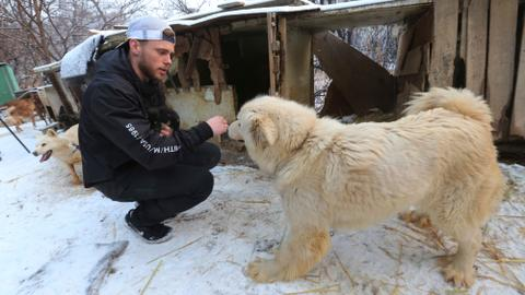 'Heartbroken' Kenworthy visits dog meat farm, adopts puppy