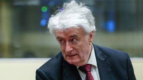 Former Bosnian Serb leader Karadzic wants war crimes conviction overturned