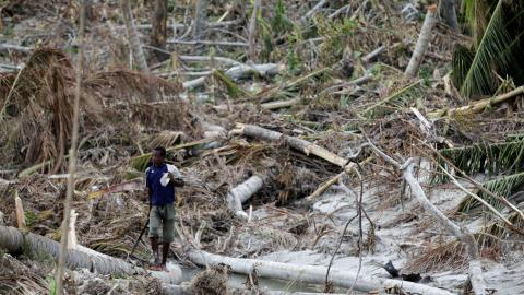 Risk of famine looms large in Haiti after Hurricane Matthew