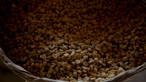 Climate change poses threat to coffee quality in Guatemala