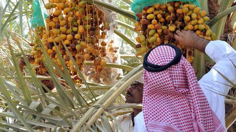 UAE bans imports of Indian fruits and vegetables after Nipah virus outbreak