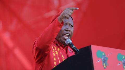 What does Julius Malema want?